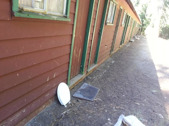 Strawberry Lodge: toilet seat left outside