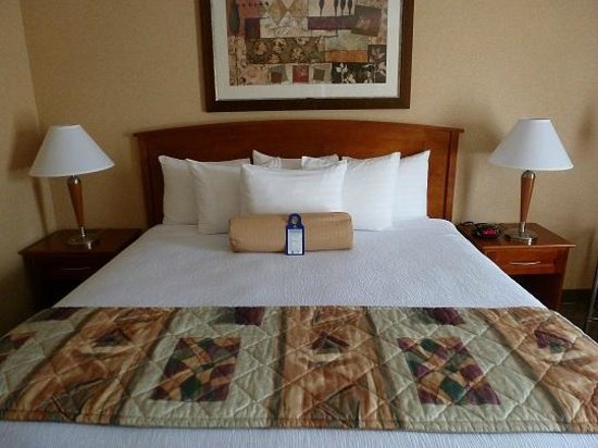 BEST WESTERN PLUS Tempe by the Mall: King Bed Motiff