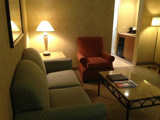 Embassy Suites by Hilton Philadelphia-Valley Forge: Living area