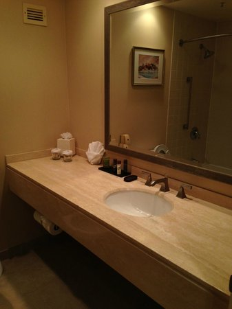 Embassy Suites by Hilton Philadelphia-Valley Forge: Bathroom sink