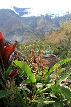 Eco Quechua Lodge: View from the upper level