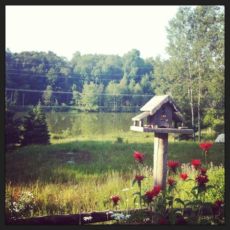Morgan House Bed and Breakfast and Wool Works Studio: View over the lake next to the house
