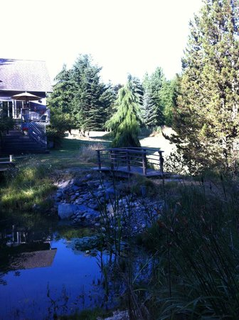 Lost Mountain Lodge: A view from the back of the Lodge.