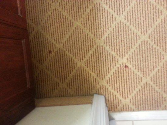 Residence Inn Charlotte Piper Glen : red spots on carpet