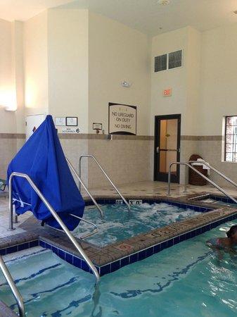 Staybridge Suites Chesapeake : Hot Tub