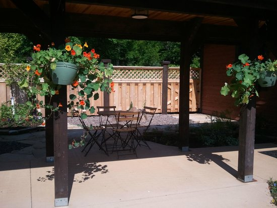 Drumming Woods B&B: beautiful stone patio and pergola
