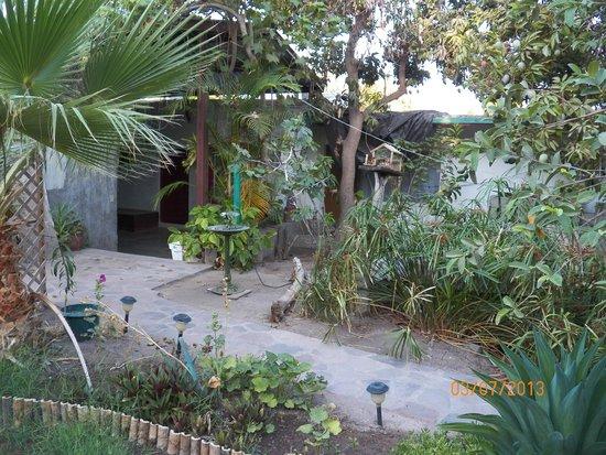 Hotel Posada San Martin: Jardin