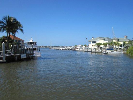 Naples Bay Resort: Hotel Grounds