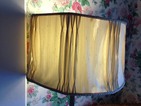 Belvedere Mansion : Gross lampshades were just the beginning