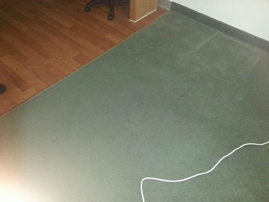 Extended Stay America - St. Louis - Westport - Craig Road : not sure this is a good pic, but upclose the carpet was very dirty