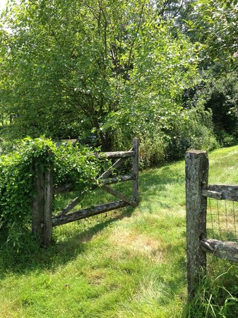 Frog Hollow Farm Bed & Breakfast: Pasture gate