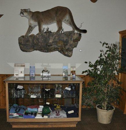 Buck's T-4 Lodge: Lobby