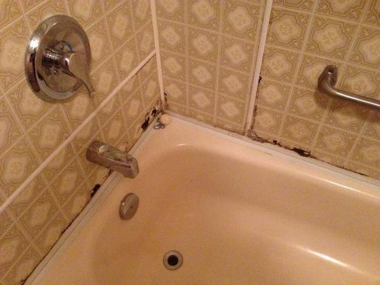 Maison Chez Laurent: Salle de bain insalubre