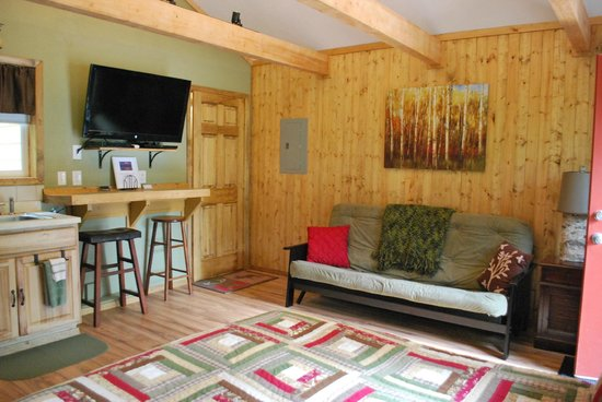 Talkeetna Chalet Bed & Breakfast: Living space