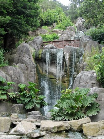 Stow Lake : Gorgeous waterfall on Strawberry Hill.