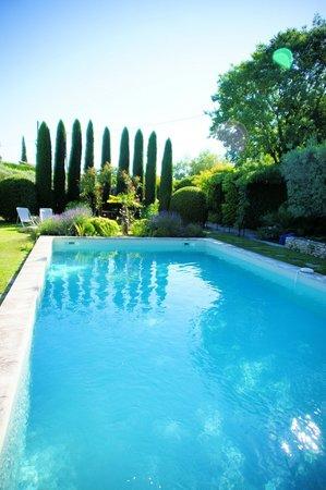 Le Mas des Roses : The beautiful pool area