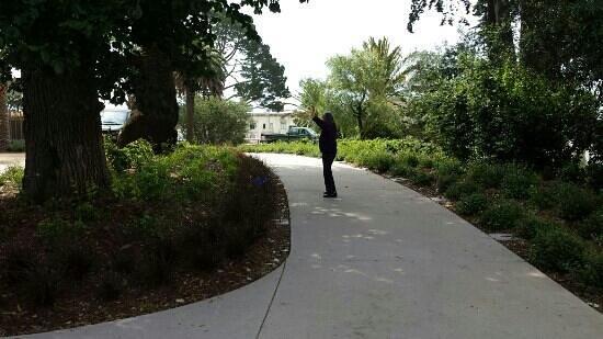 Lafayette Park: doing Tai Chi