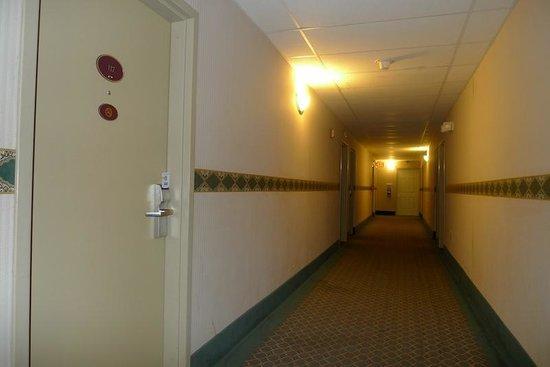 Rodeway Inn Springhills Lake George: Hallways