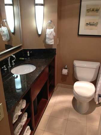 Embassy Suites by Hilton Detroit Southfield: Bathroom