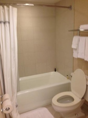 Toronto Airport Marriott Hotel: shower