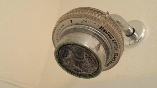 Beachcomber Inn: Shower and shower head looked like it hadn't been cleaned in years.