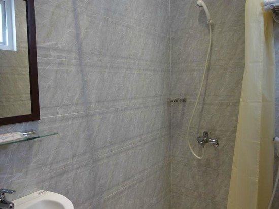 Dai A hotel: Shower curtain.