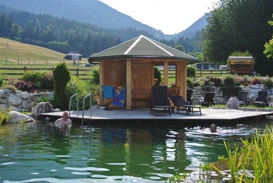 Het natuurzwembad van Ferienhaus Franz