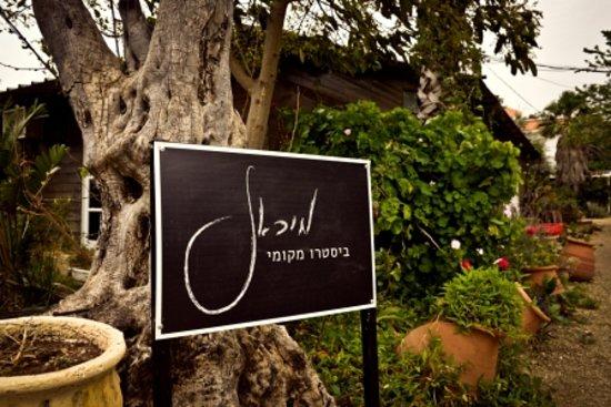 לימן, ישראל: getlstd_property_photo