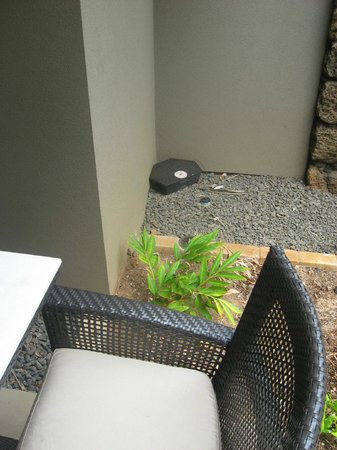 Koa Kea Hotel & Resort: Rat Bait Station on Patio