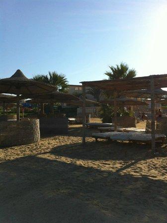 Blue Reef Red Sea Resort: spiaggia