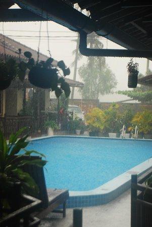 Makara Guesthouse: Pool