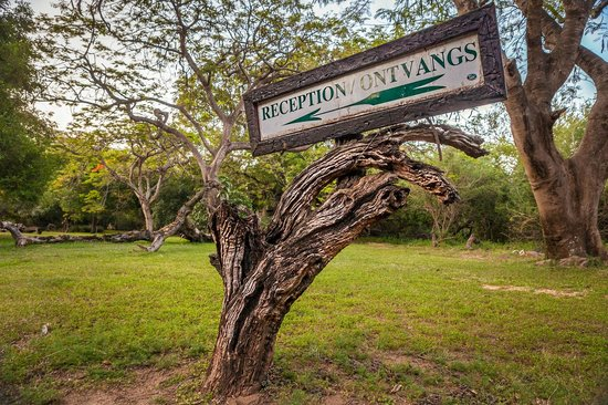 Blyde River Canyon Lodge: 'Ontvangs'