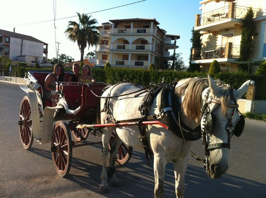 Planos Bay Hotel: Horse and carriage ride