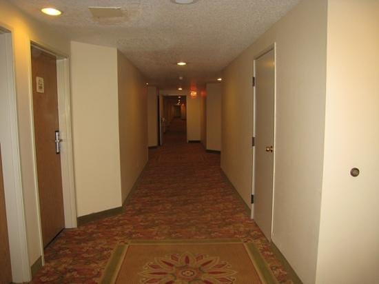 Monarch Hotel and Conference Center : hallway