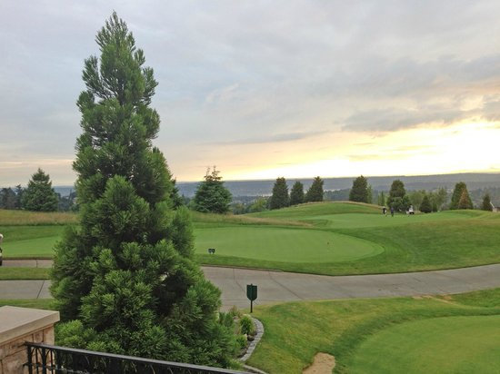 Newcastle Country Club: View from Patio