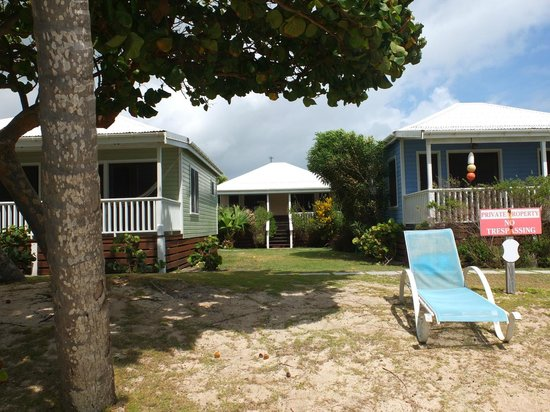 Dutchman's Bay Cottages: Vista dalla spiaggia