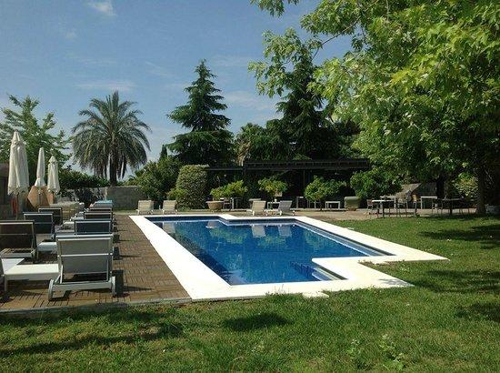 Mas Passamaner : La esplendida piscina