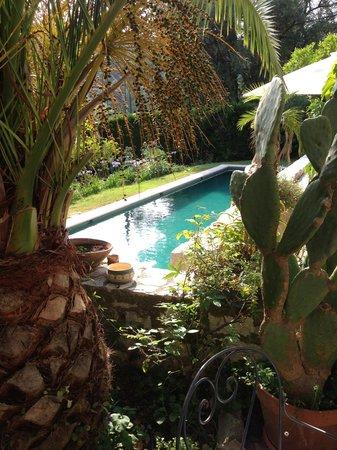 Les Orangers: Vanaf terras zicht op zwembad