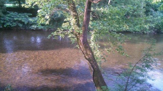 Danny Kay's: river2