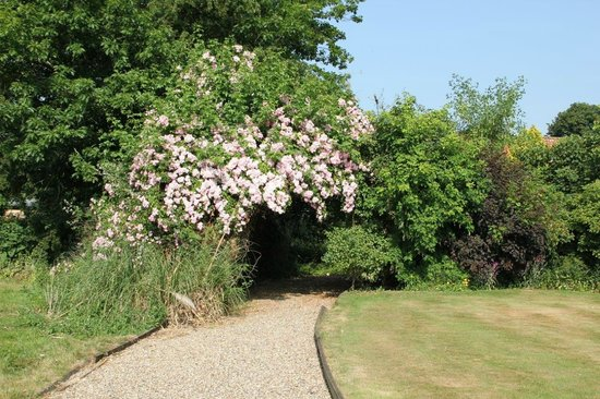 Haughley House: Garden