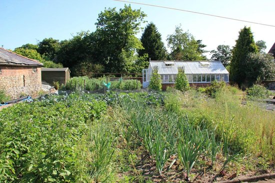 Haughley House: Kitchen Garden