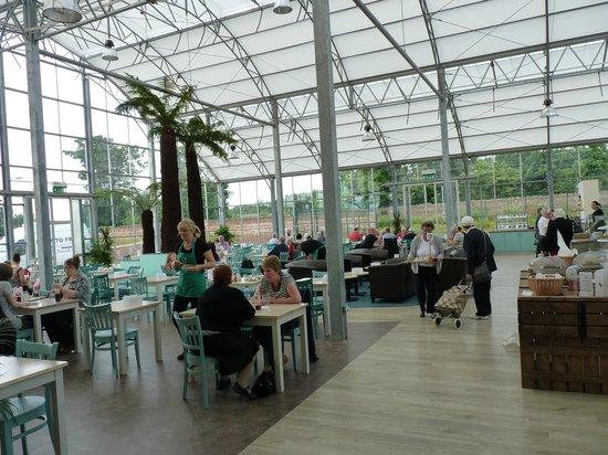 Dunbar Garden Centre Restaurant: Inside the unique glass restaurant