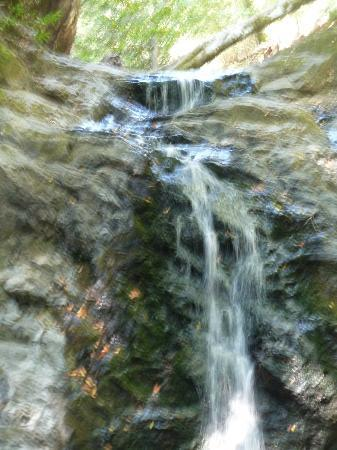 Uvas Canyon County Park: Falls