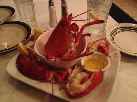 Alfredo's Family Pizzeria Restorante: My Anniversary Lobster at Alfredo's Thursday Special.