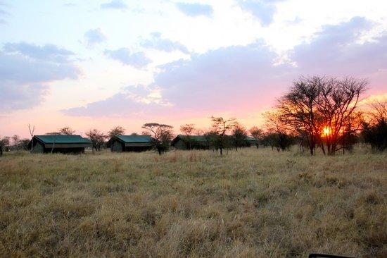 Ang'ata Camp Serengeti: Exterior