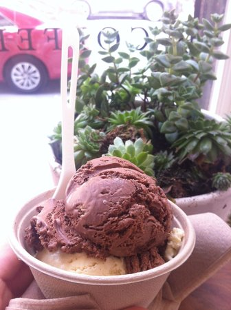 Van Leeuwen Artisan Ice Cream: Chocolate & vanilla