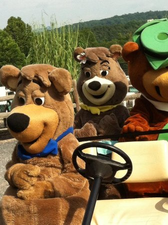 Yogi Bear's Jellystone Park at Natural Bridge: morning fun near pool