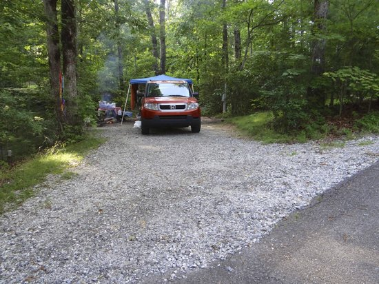 Ash Grove Mountain Cabins & Camping: Our site