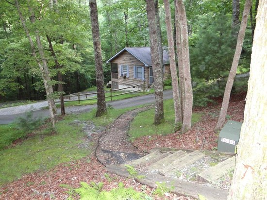 Ash Grove Mountain Cabins & Camping : One of the cabins