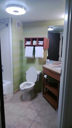 Hampton Inn Tampa / Brandon: Bathroom